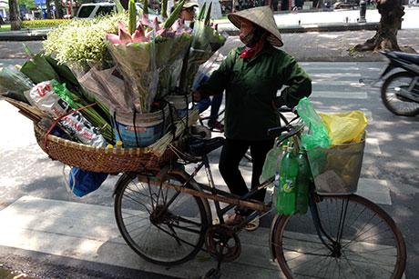 Vietnam - O destinatie inca neexplorata - Mai