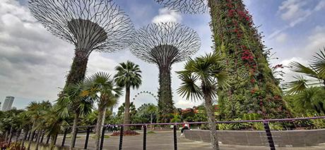 Impresii Thailanda, Malaezia & Singapore - noiembrie 2019