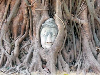 Impresii Indochina - Ianuarie 2013